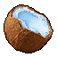 Fruit_Coconut_Icon.png