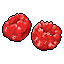 Fruit_Raspberry_Icon.png